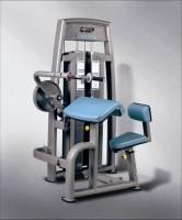 IMPACT三头肌训练机 TH9930