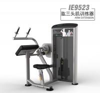 英派斯   IE9523肱三头肌训练器