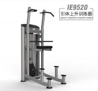 英派斯  IE9520引体上升训练器