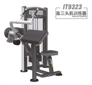 英派斯  IT9323  肱三头肌训练机