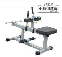 英派斯   IFCR  小腿训练器