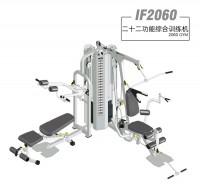 英派斯  IF2060   二十二功能两站位综合训练机